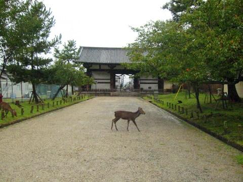 奈良東大寺転害門