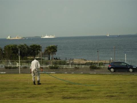 横須賀美術館から望む東京湾