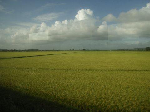 石巻線の車窓
