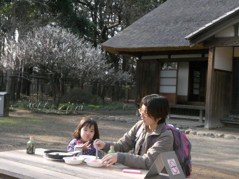 江戸東京たてもの園にて少し早い花見